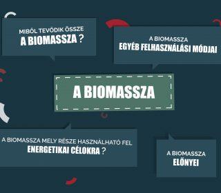 biomassza fogalma